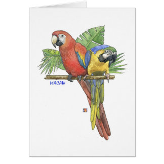 Tropical Macaws Note Card