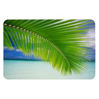 Tropical Ocean Magnet Rectangular Photo Magnet