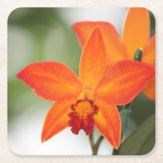 Tropical Orchid Paper Coaster