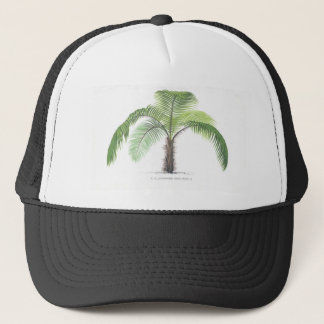 tropical palm tree collection - drawing VI Trucker Hat