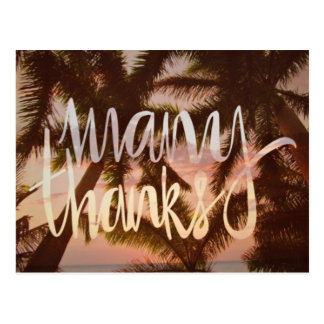 Tropical Palm Tree Thank You Cards