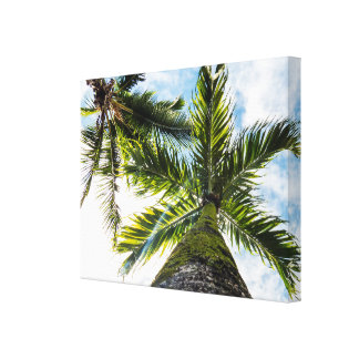 Tropical Palm Trees Canvas Print