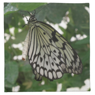 Tropical Paper Kite Butterfly Napkins