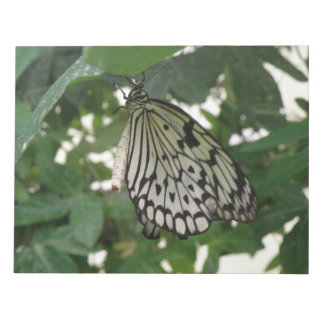 Tropical Paper Kite Butterfly Notepad