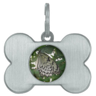 Tropical Paper Kite Butterfly Pet Tag