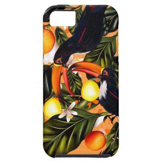 Tropical paradise. Toucans and citrus iPhone 5 Case