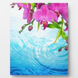 tropical paradise,zen,peace,orchid,blue water,yoga plaque