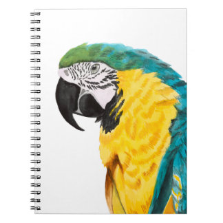 Tropical Parrot Bird Notebook