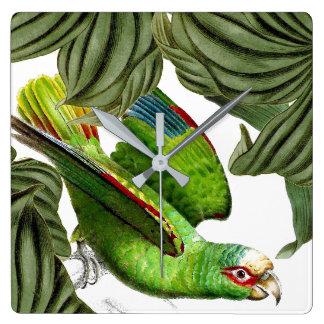 Tropical Parrot Bird Wildlife Animals Wall Clock
