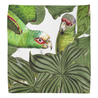 Tropical Parrot Birds Wildlife Animal Bandana
