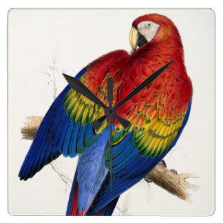 Tropical Parrot Clock