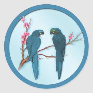 Tropical Parrots Round Sticker