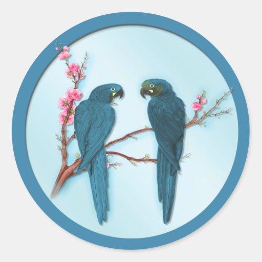 Tropical Parrots Stickers