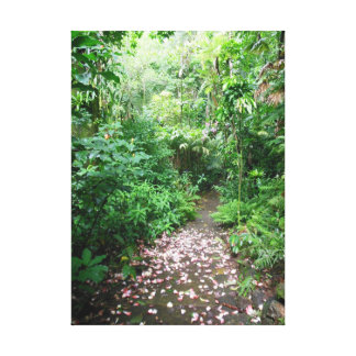 Tropical Pathway Canvas Print