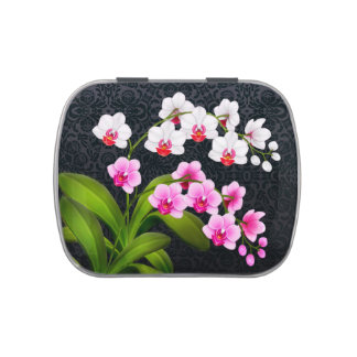 Tropical Phalaenopsis Orchid Flowers Candy Tin