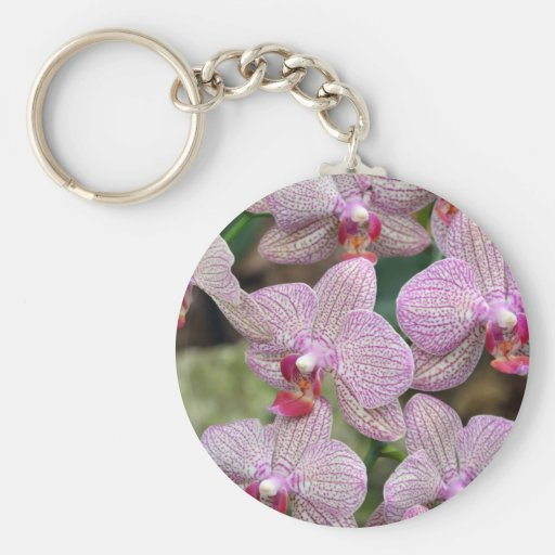 Tropical pink moth orchid flowers key chain