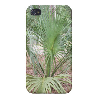 Tropical Plant iPhone Case iPhone 4/4S Cases