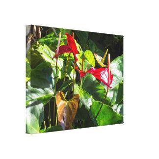 Tropical Plants Canvas Print
