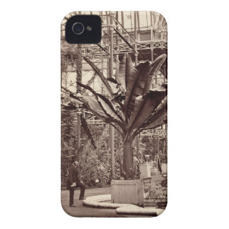 Tropical Plants in the Egyptian Room, Crystal Pala Case-Mate iPhone 4 Case