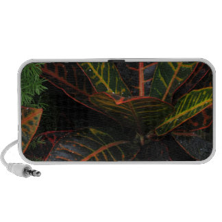 Tropical Plants Travelling Speakers