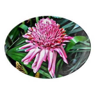 Tropical Platter - Pink Ginger