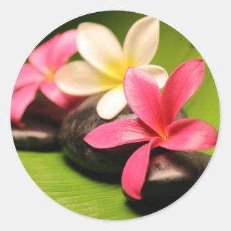 tropical plumeria flowers on stones classic round sticker