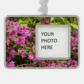 Tropical Purple Bougainvillea Silver Plated Framed Ornament