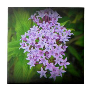 Tropical Purple Hawaiian Flowers Tile