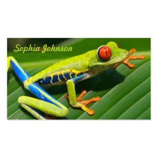 Tropical rainforest green red-eyed tree Frog Pack Of Standard Business Cards