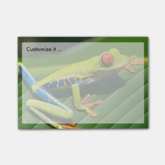 Tropical rainforest green red-eyed tree Frog Post-it® Notes