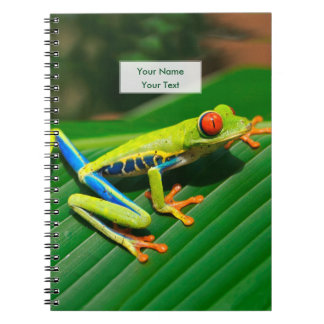 Tropical rainforest green red-eyed tree Frog Spiral Note Books