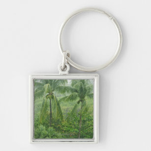 Tropical rainforest key ring