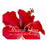 Tropical Red Hibiscus Flower Thank You Postcards