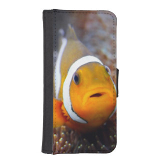 Tropical reef fish - Clownfish iPhone SE/5/5s Wallet Case