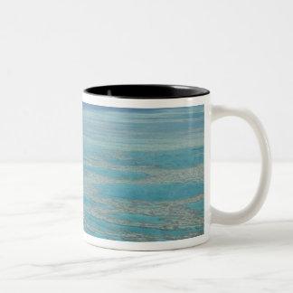 Tropical reef, Great Barrier Reef, Queensland, Coffee Mugs