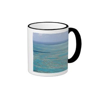 Tropical reef, Great Barrier Reef, Queensland, Ringer Mug