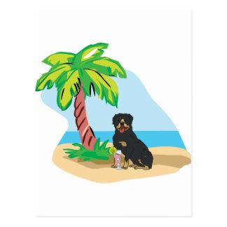 tropical rottweiler postcard