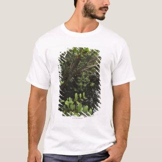 Tropical salt pond T-Shirt
