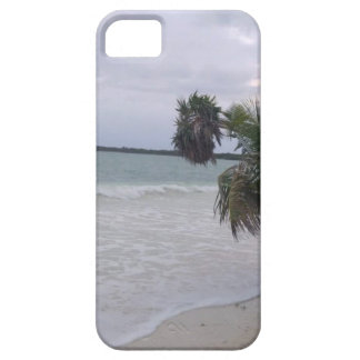 Tropical Sandy Beach, Ocean Waves and Palm Trees iPhone 5 Covers