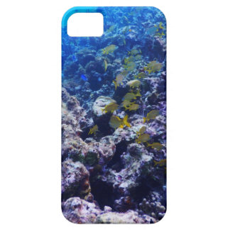 Tropical Sealife Case For The iPhone 5