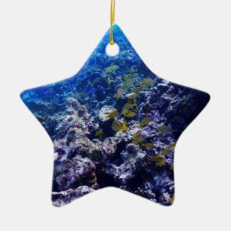 Tropical Sealife Ceramic Star Decoration