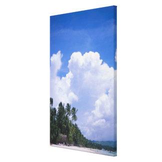 Tropical shoreline canvas print