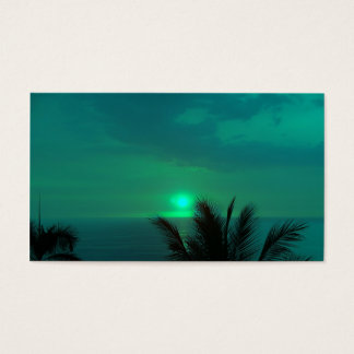 TROPICAL SKIES BUSINESS CARD