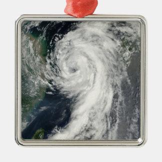 Tropical Storm Dianmu Christmas Ornament