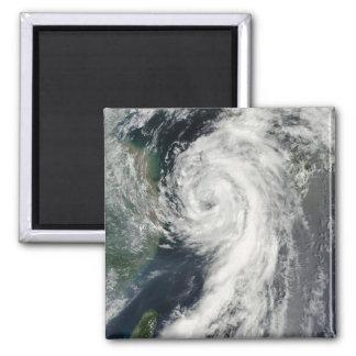 Tropical Storm Dianmu Magnet