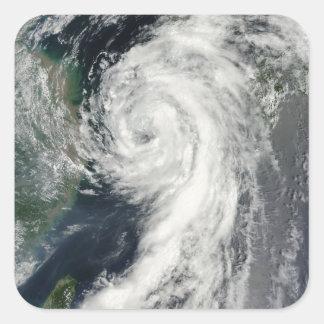 Tropical Storm Dianmu Square Sticker