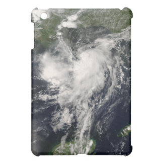 Tropical Storm Edouard iPad Mini Cover