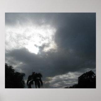 tropical storm print
