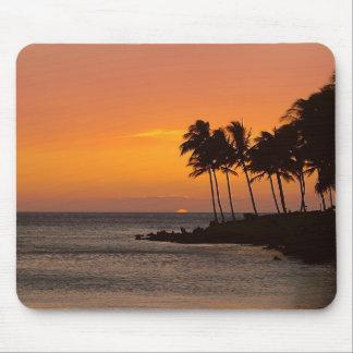 Tropical Sunset Mouse Mat