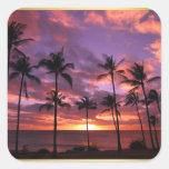 Tropical Sunset Square Wedding Sticker